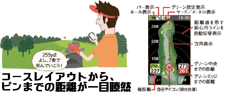 85_2_43